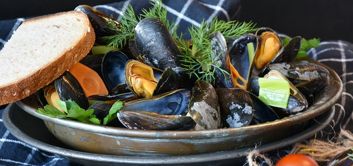 improve your immune system eating shellfish